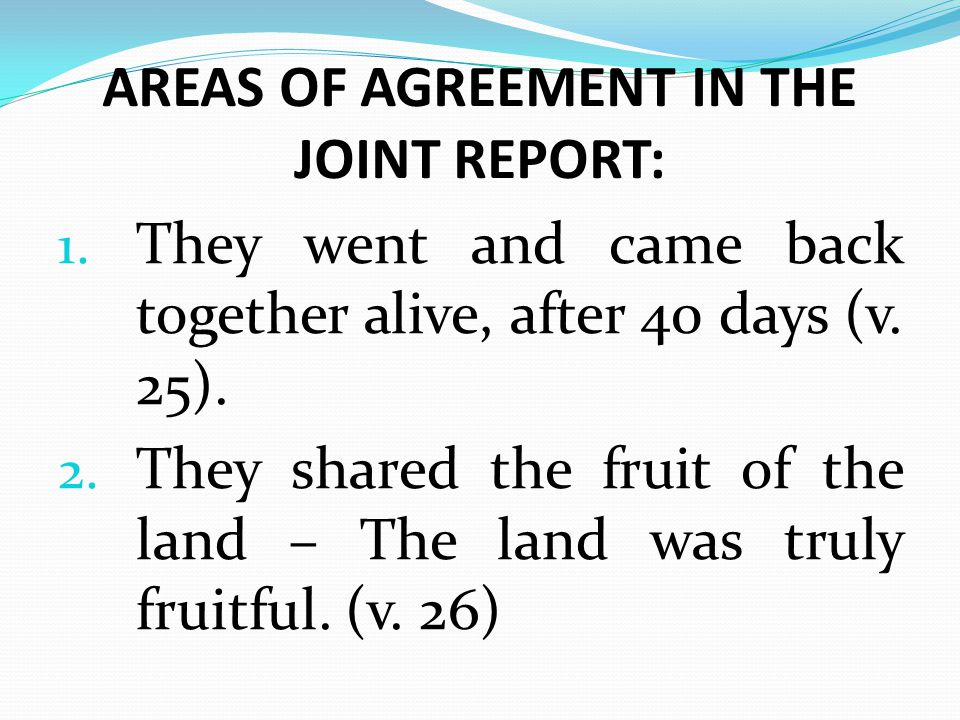 AREAS OF AGREEMENT IN THE JOINT REPORT: