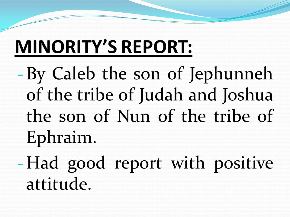 MINORITY'S REPORT: By Caleb the son of Jephunneh of the tribe of Judah and Joshua the son of Nun of the tribe of Ephraim.