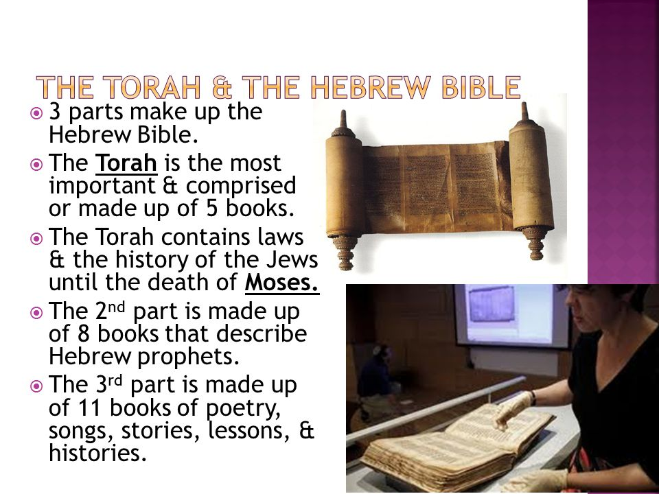 The Torah & The Hebrew Bible