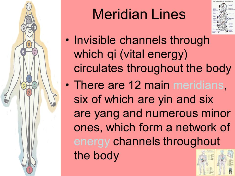 Meridian Lines Invisible channels through which qi (vital energy) circulates throughout the body.