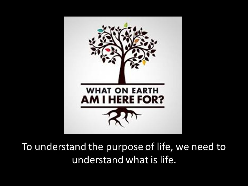 To understand the purpose of life, we need to understand what is life.