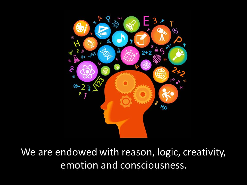 We are endowed with reason, logic, creativity, emotion and consciousness.