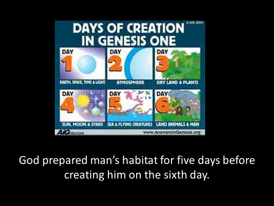 God prepared man's habitat for five days before creating him on the sixth day.