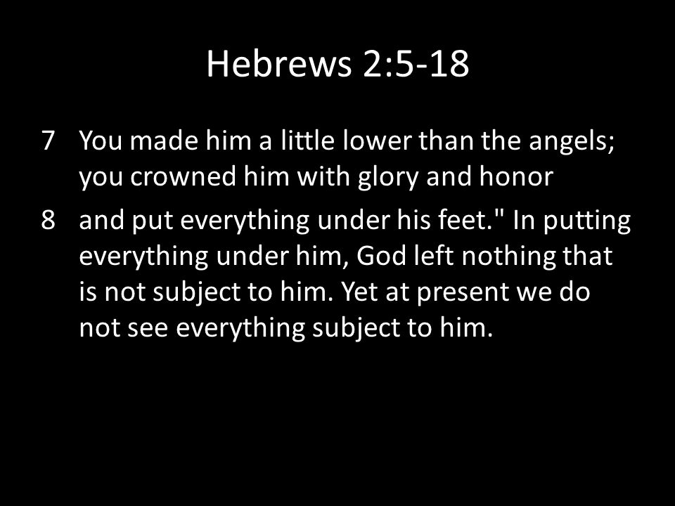 Hebrews 2:5-18 You made him a little lower than the angels; you crowned him with glory and honor.