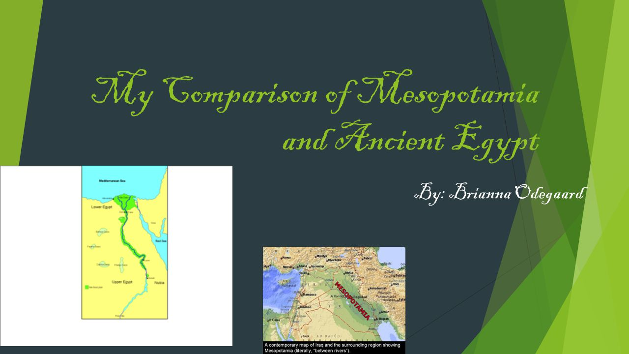 My Comparison of Mesopotamia and Ancient Egypt
