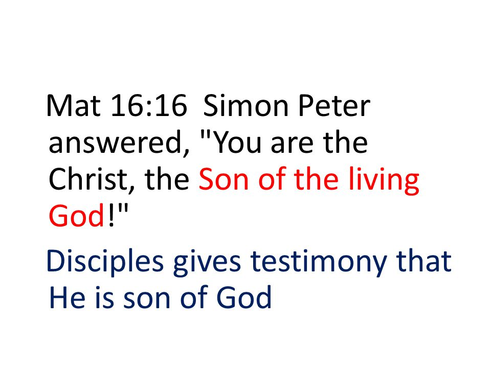 Mat 16:16 Simon Peter answered, You are the Christ, the Son of the living God!