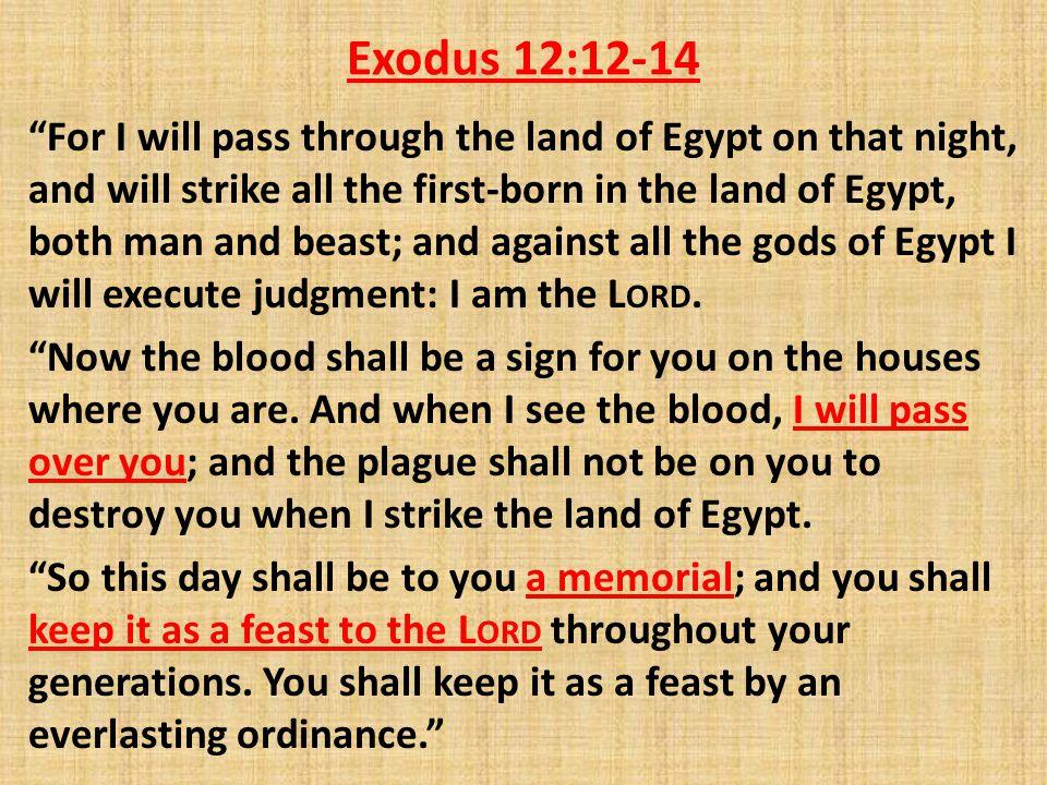 Exodus 12:12-14