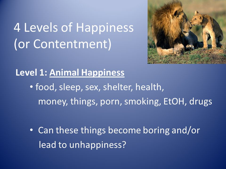 4 Levels of Happiness (or Contentment)