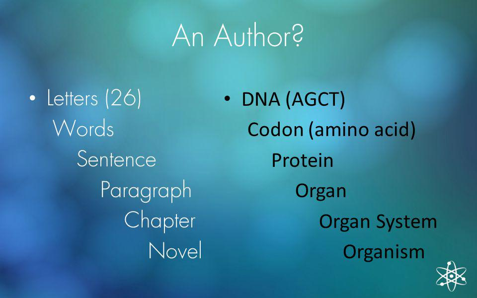 An Author Letters (26) Words Sentence Paragraph Chapter Novel