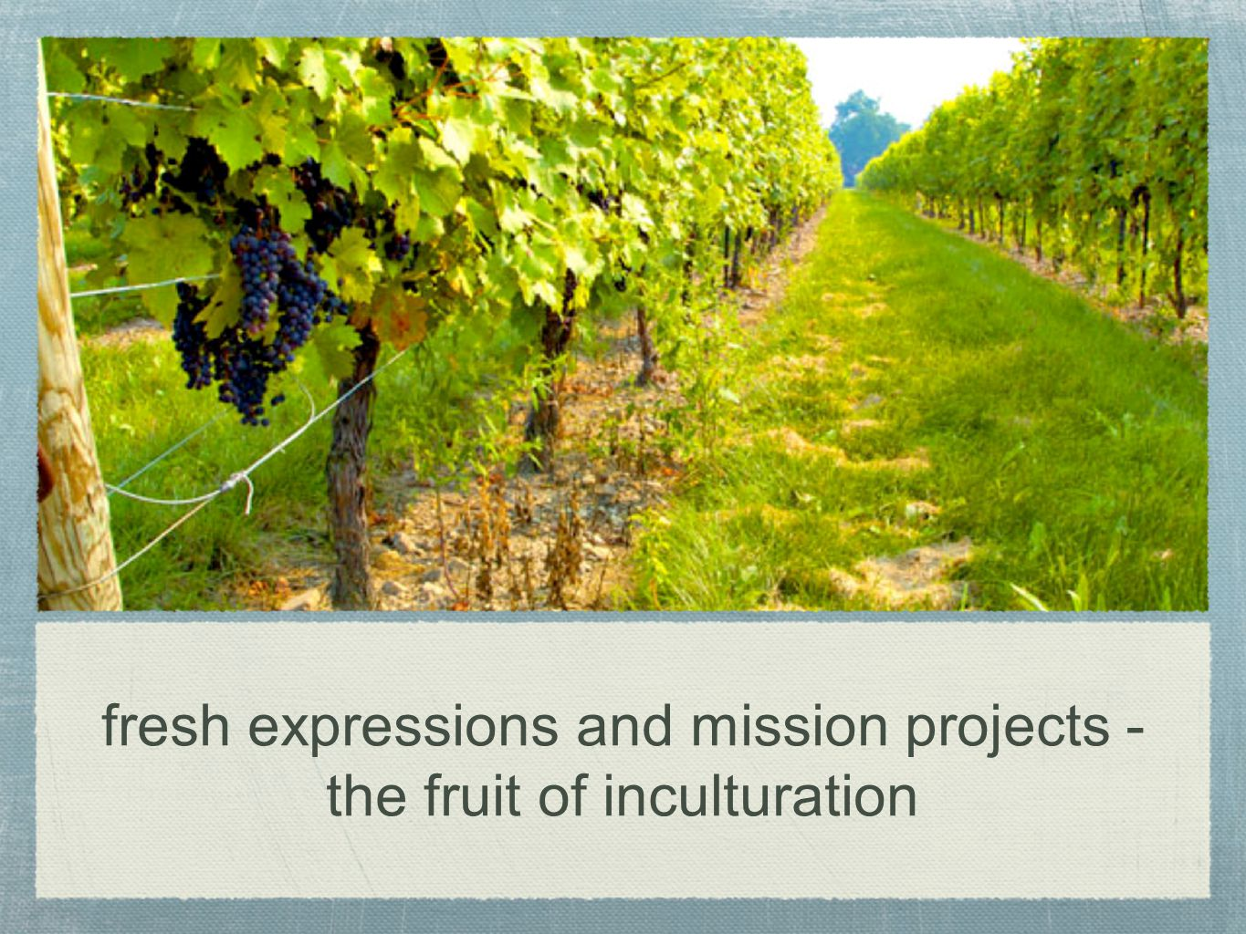fresh expressions and mission projects - the fruit of inculturation