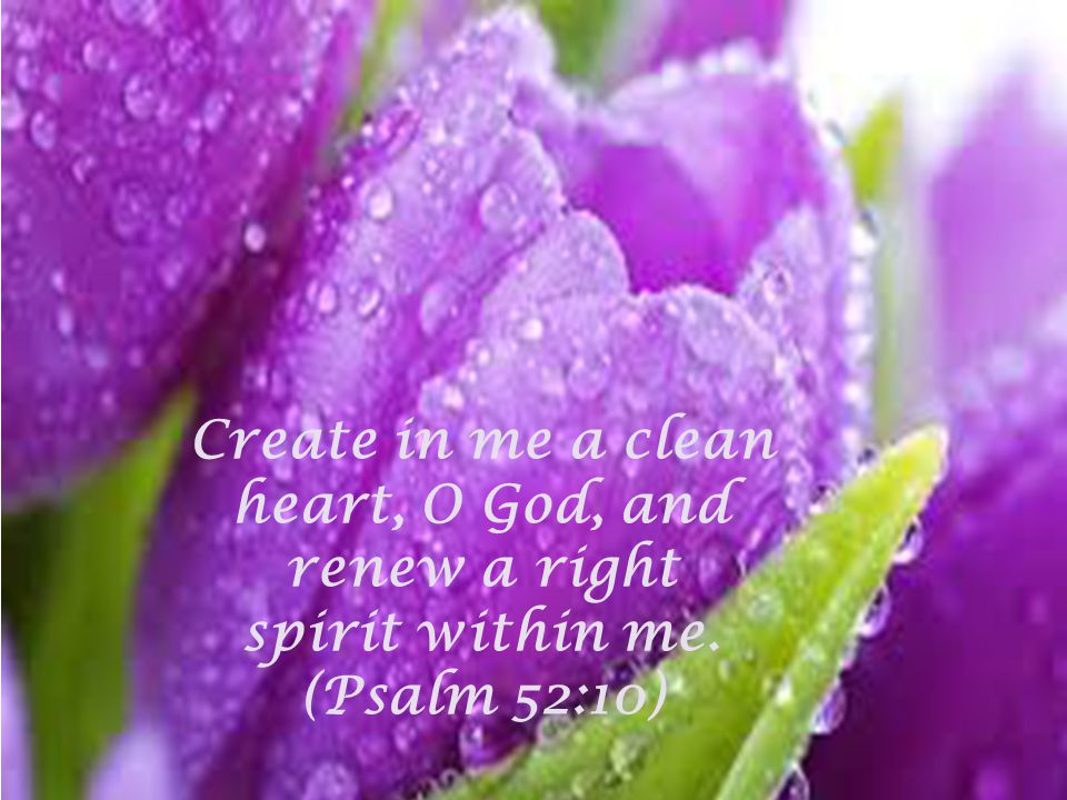 Create in me a clean heart, O God, and renew a right spirit within me. (Psalm 52:10)