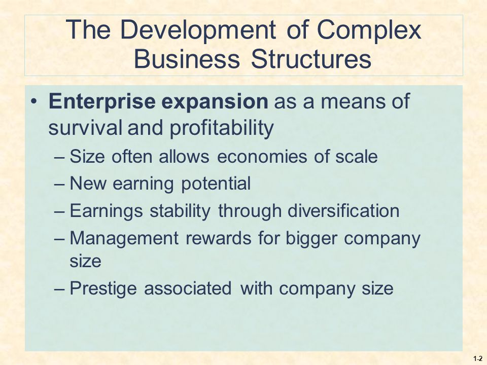 The Development of Complex Business Structures