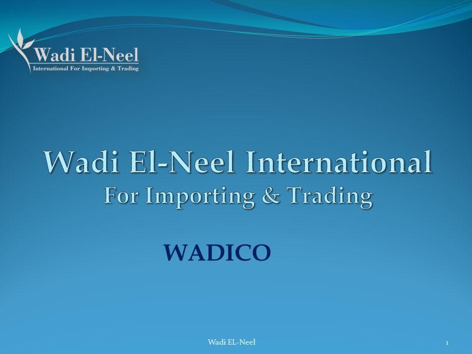 Wadi El-Neel International For Importing & Trading