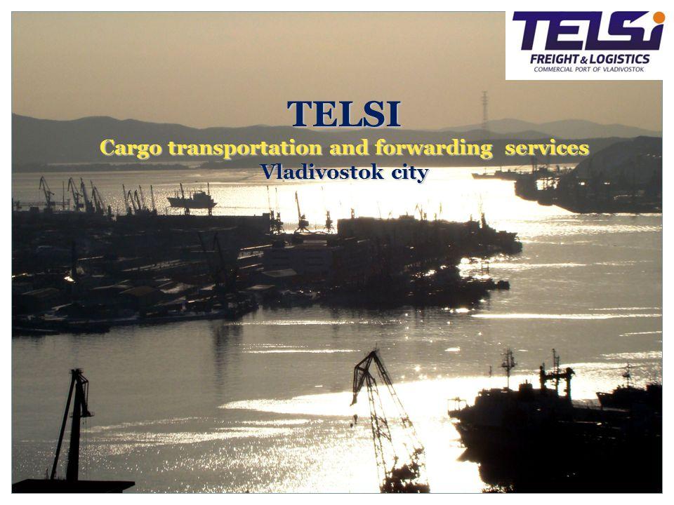 TELSI Cargo transportation and forwarding services Vladivostok city
