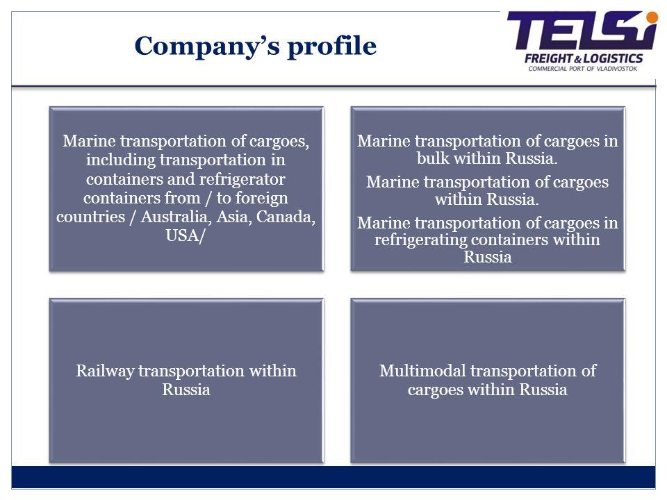 Company's profile