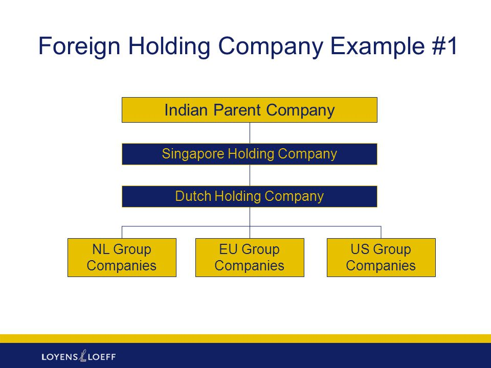 Foreign Holding Company Example #1