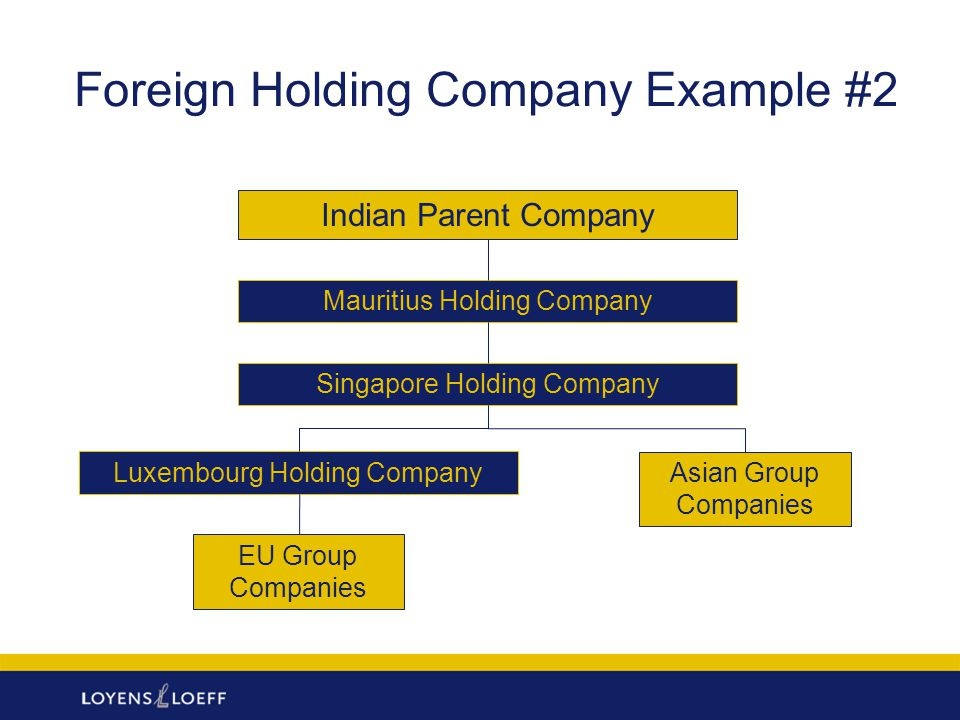 Foreign Holding Company Example #2