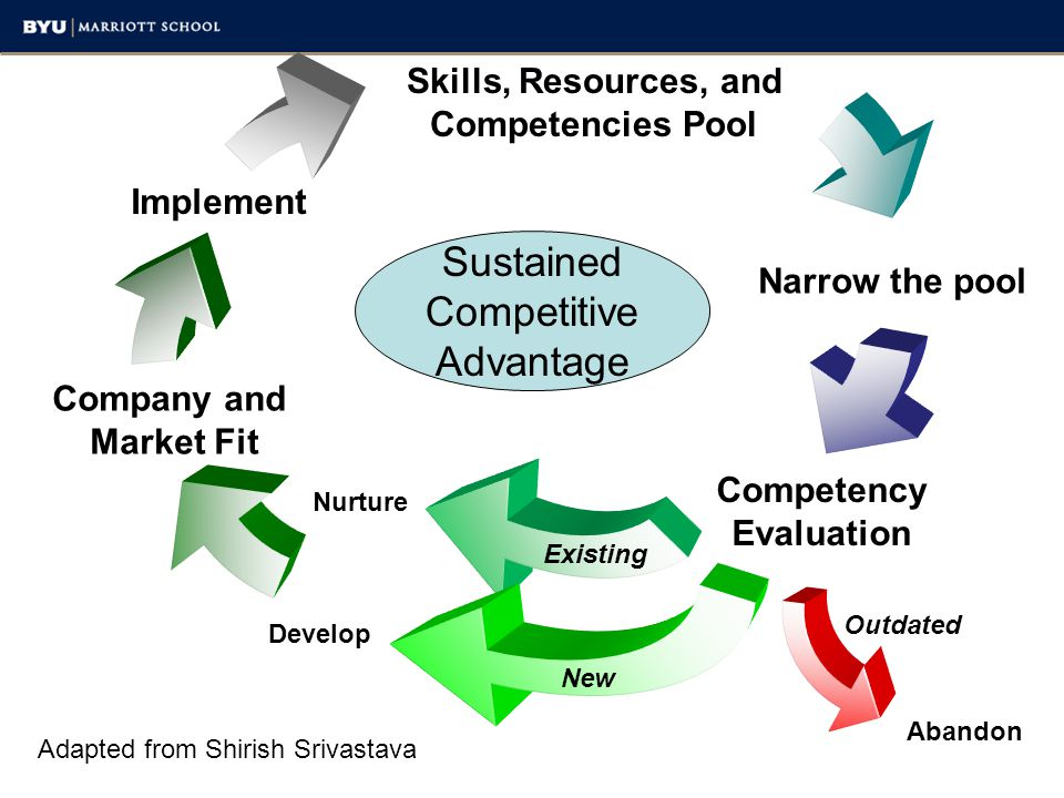 Sustained Competitive Advantage Skills, Resources, and