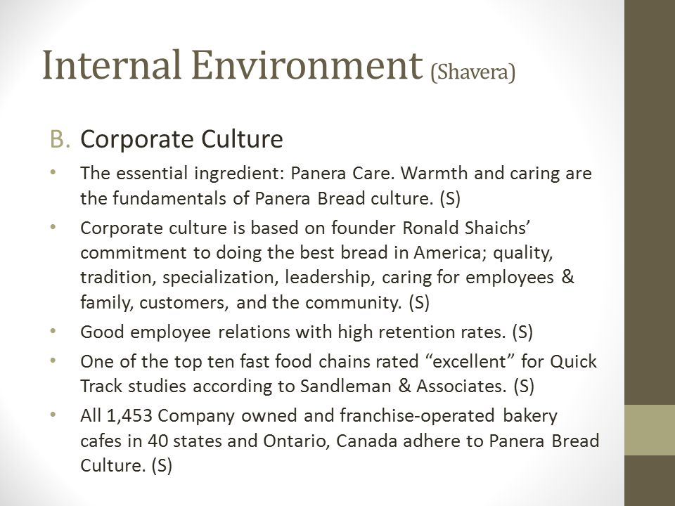 Internal Environment (Shavera)