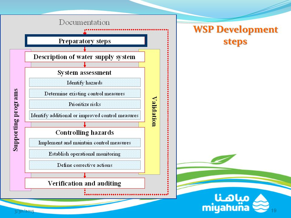 WSP Development steps 4/8/2017