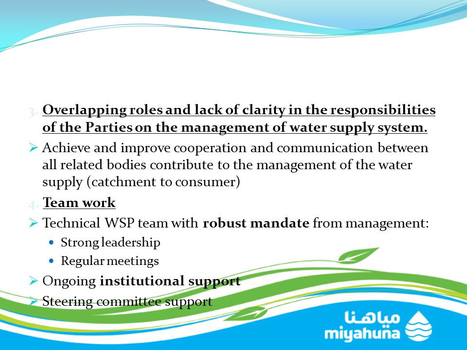 Technical WSP team with robust mandate from management:
