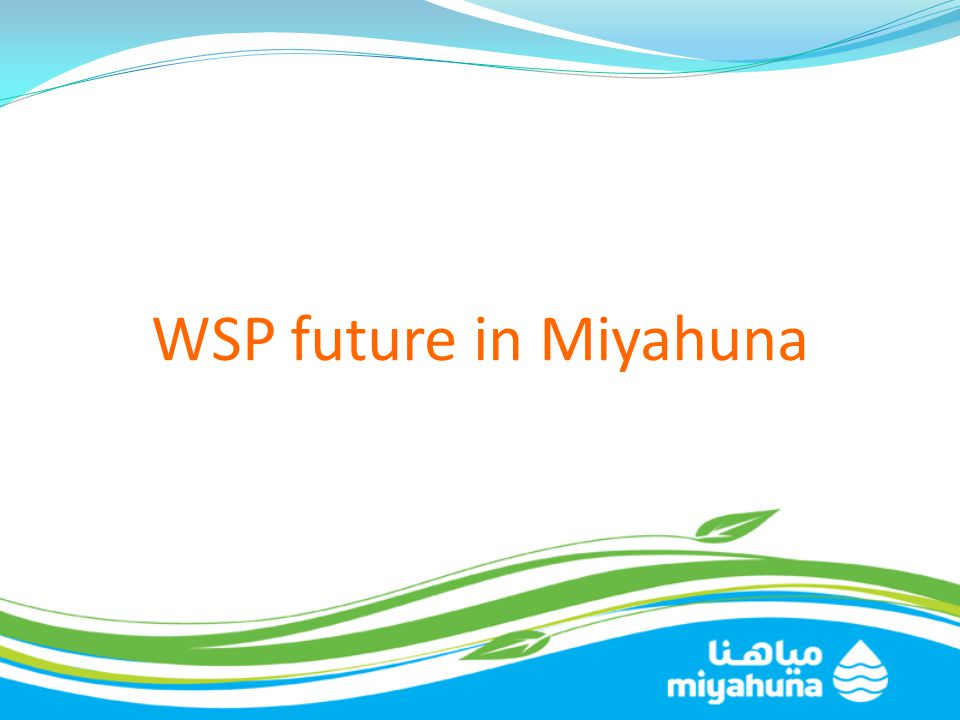 WSP future in Miyahuna