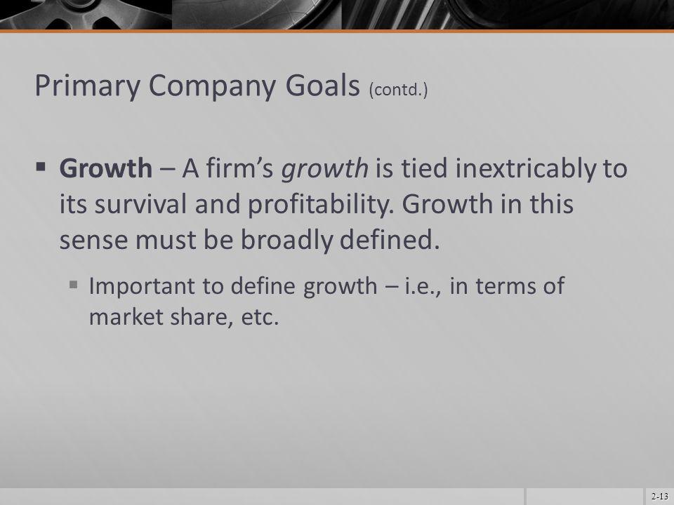 Primary Company Goals (contd.)
