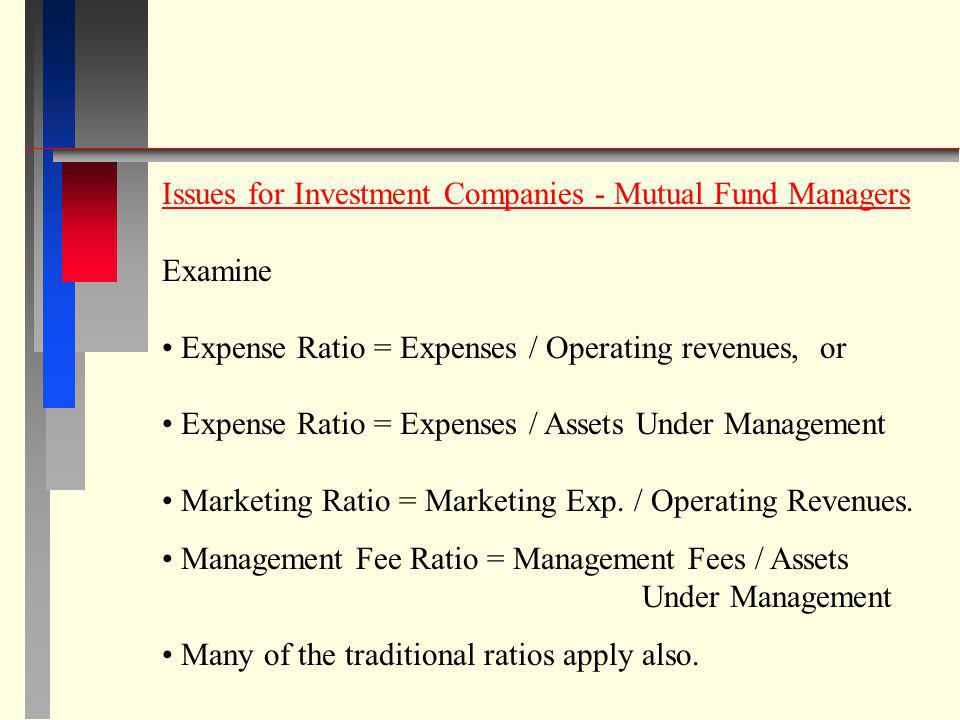 Issues for Investment Companies - Mutual Fund Managers