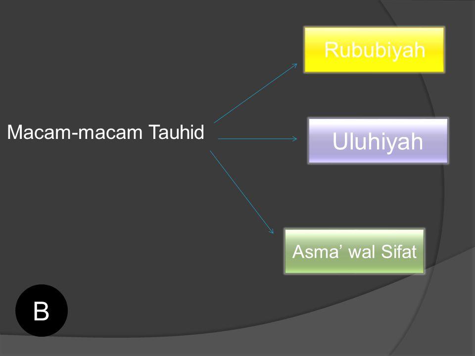 Rububiyah Macam-macam Tauhid Uluhiyah Asma' wal Sifat B