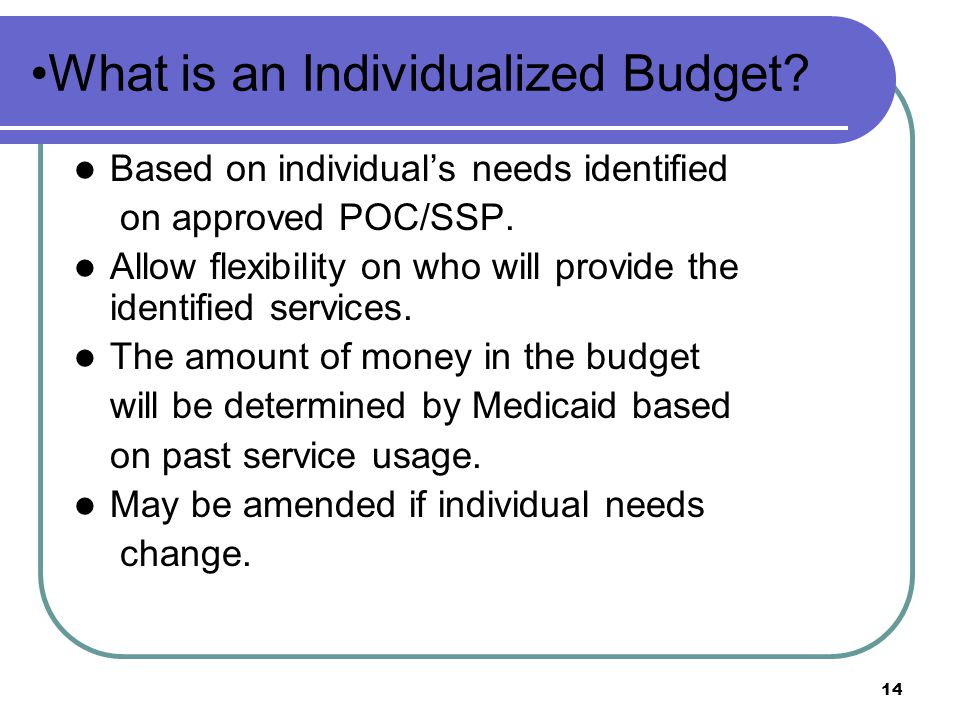 What is an Individualized Budget