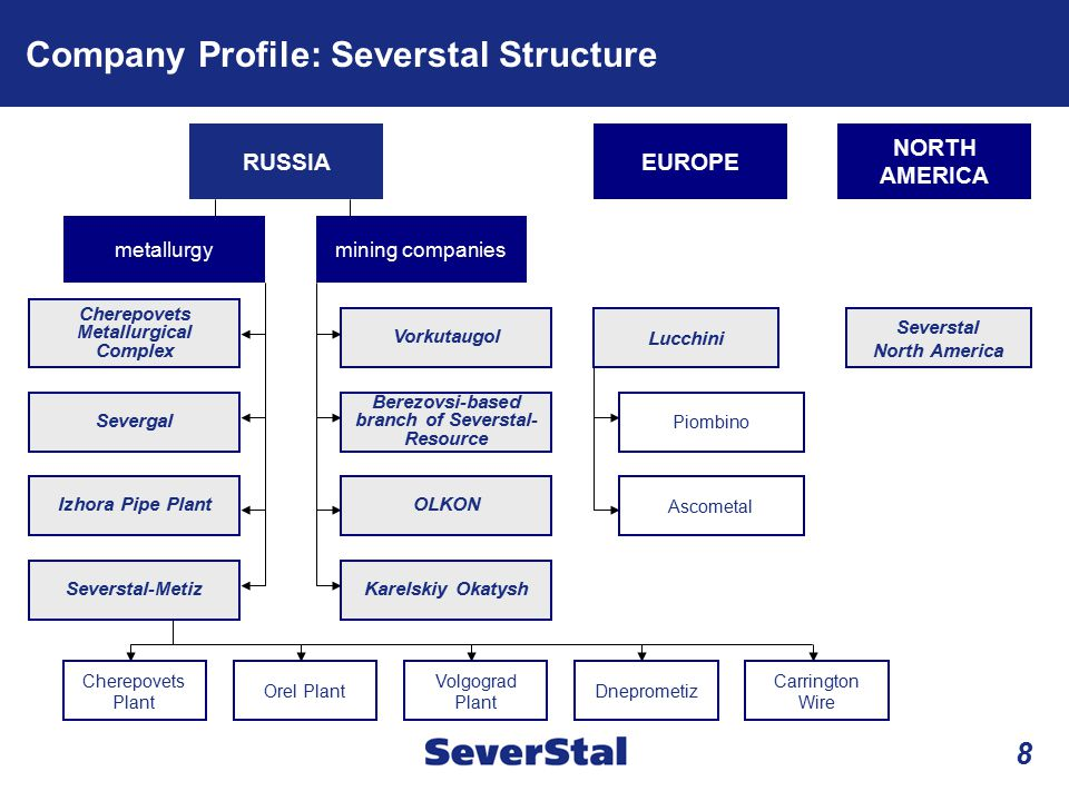 Company Profile: Severstal Structure