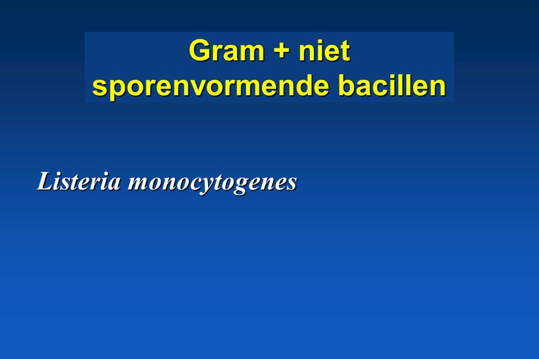 Gram + niet sporenvormende bacillen