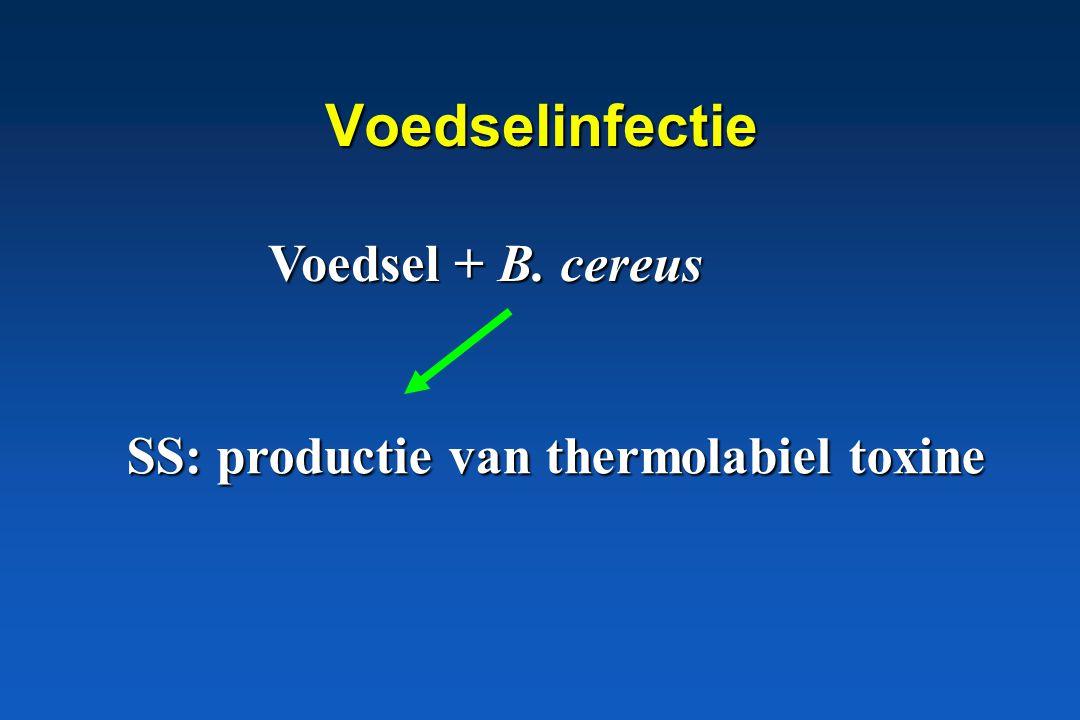Voedselinfectie Voedsel + B. cereus