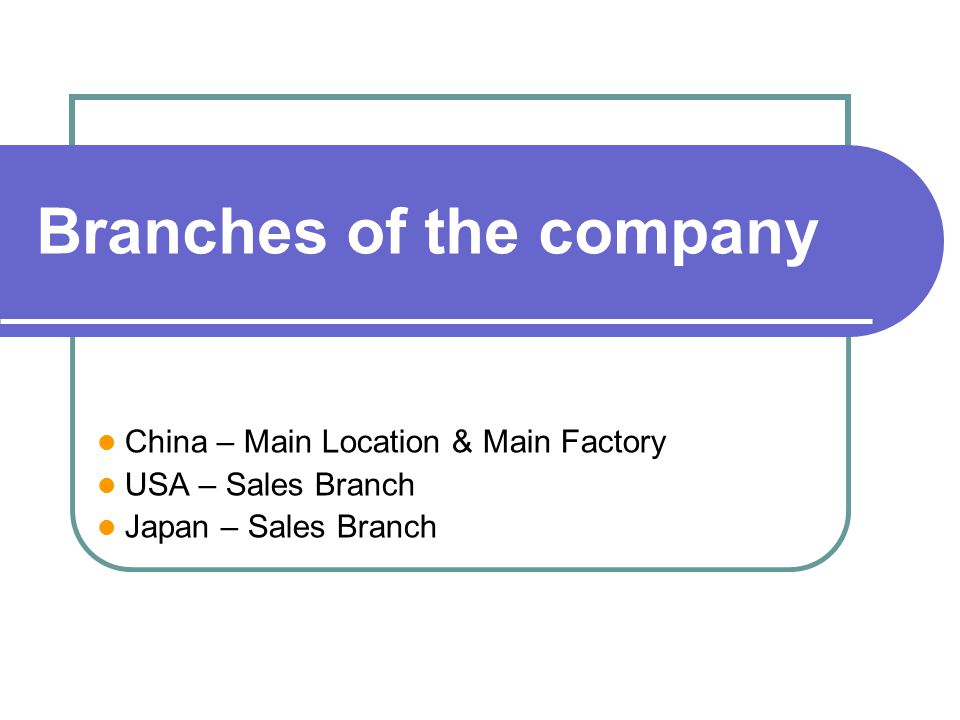 Branches of the company
