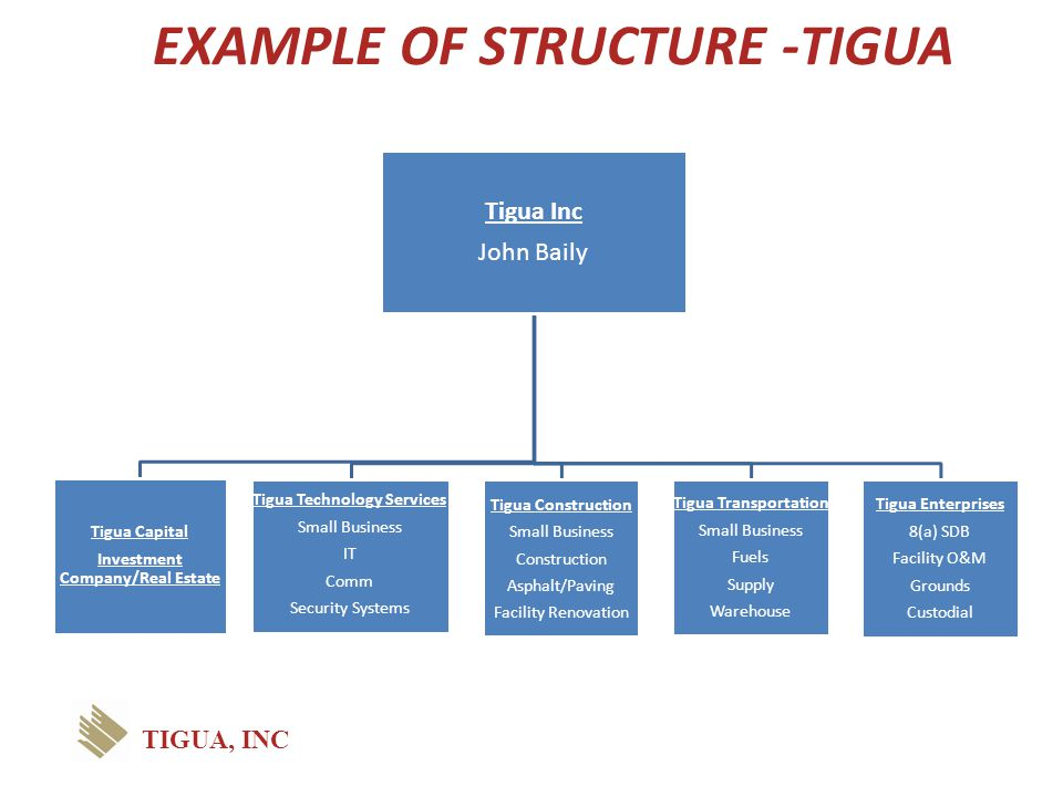 EXAMPLE OF STRUCTURE -TIGUA