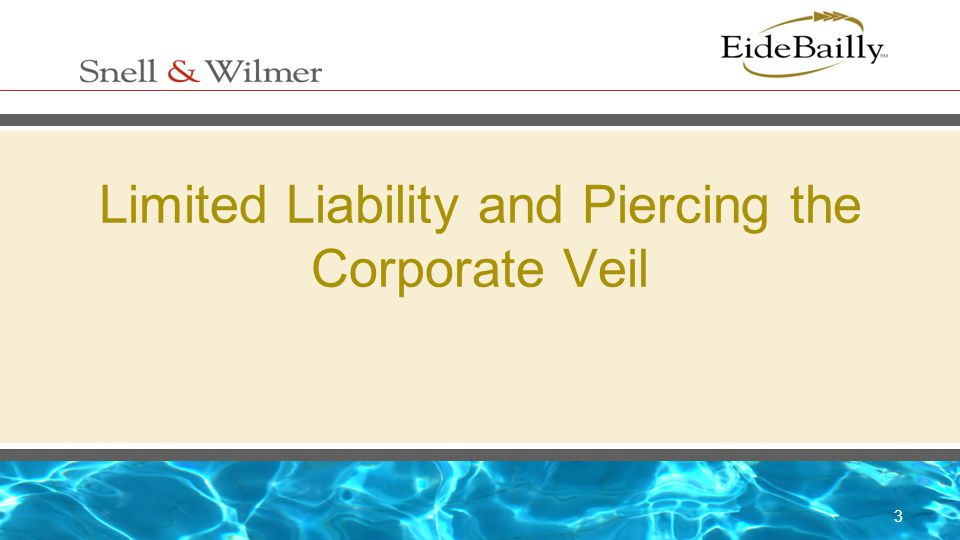 Limited Liability and Piercing the Corporate Veil