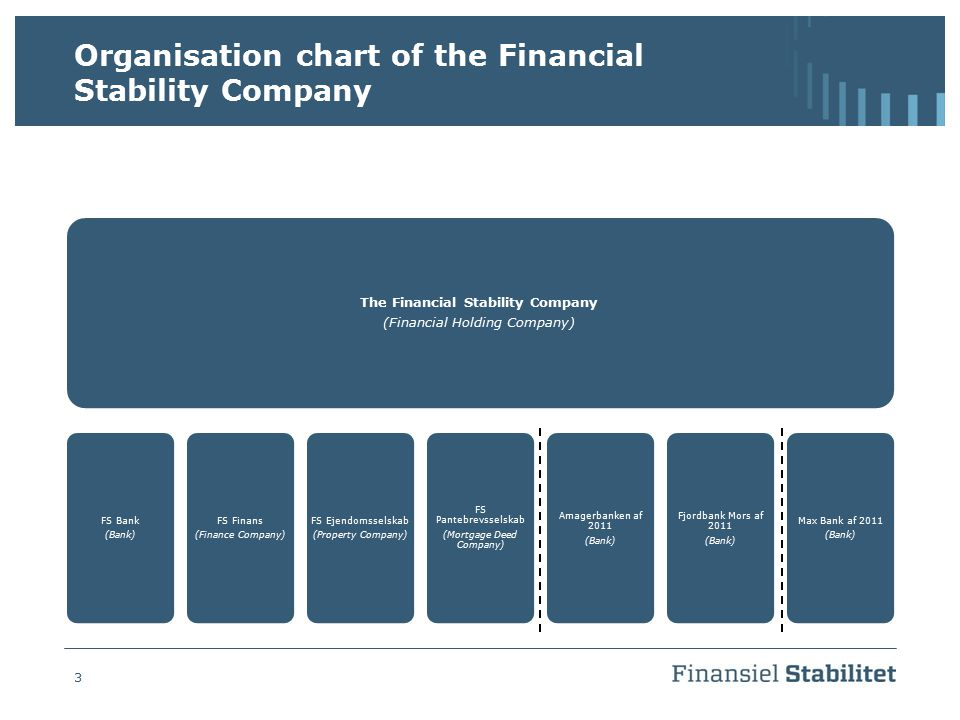 Organisation chart of the Financial Stability Company