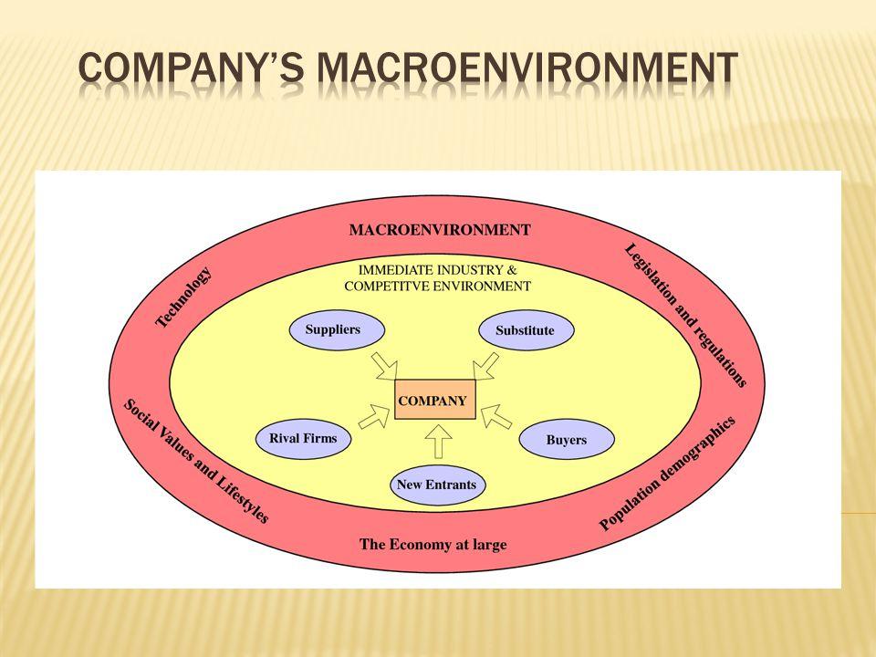 Company's macroenvironment