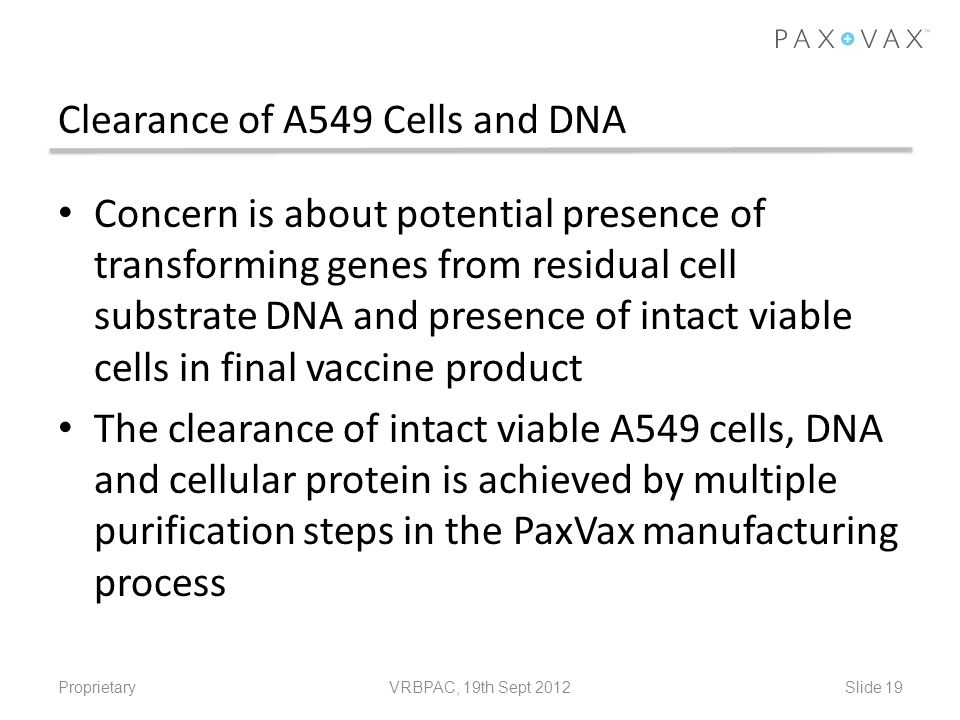 Clearance of A549 Cells and DNA