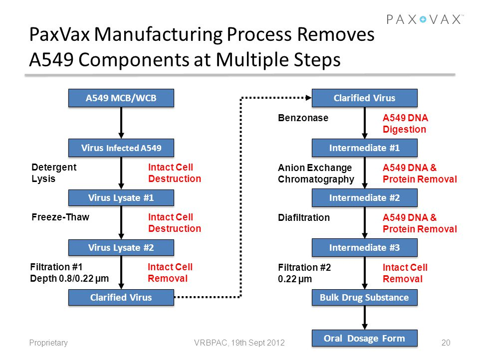 PaxVax Manufacturing Process Removes A549 Components at Multiple Steps