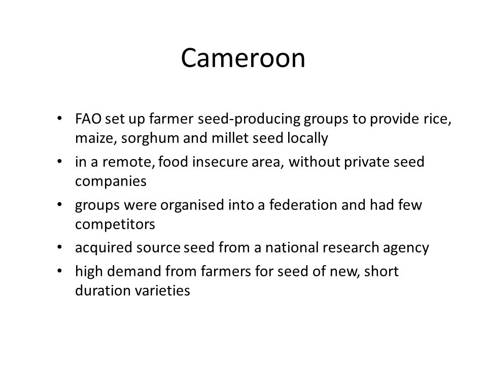 Cameroon FAO set up farmer seed-producing groups to provide rice, maize, sorghum and millet seed locally.