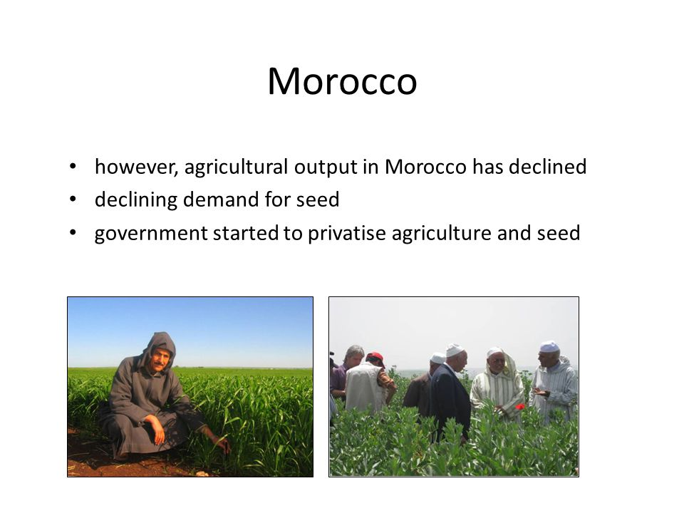 Morocco however, agricultural output in Morocco has declined