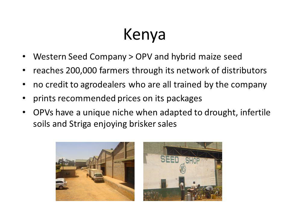 Kenya Western Seed Company > OPV and hybrid maize seed