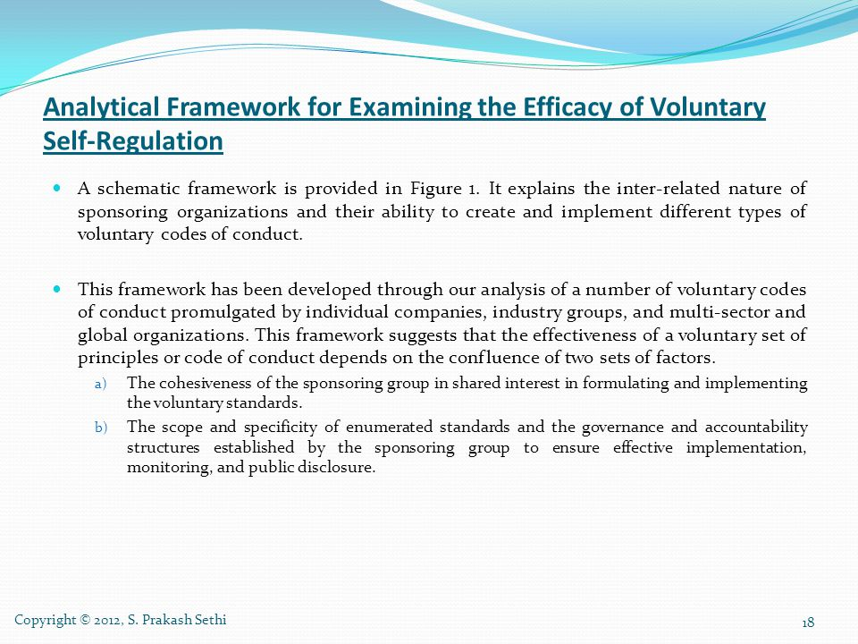 Analytical Framework for Examining the Efficacy of Voluntary Self-Regulation
