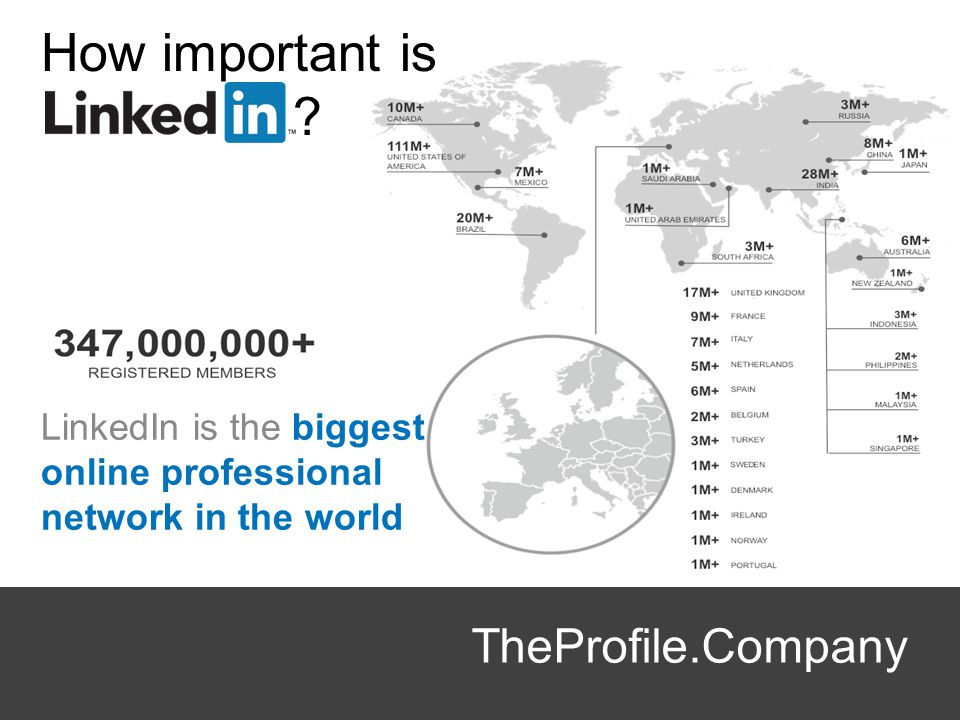 How important is TheProfile.Company