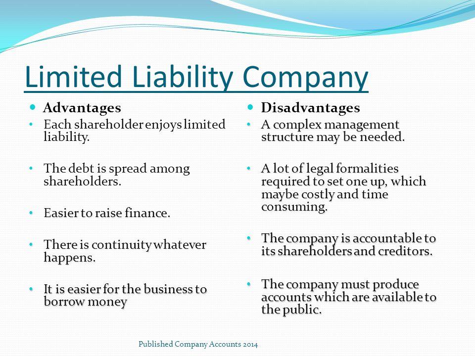 Limited Liability Company