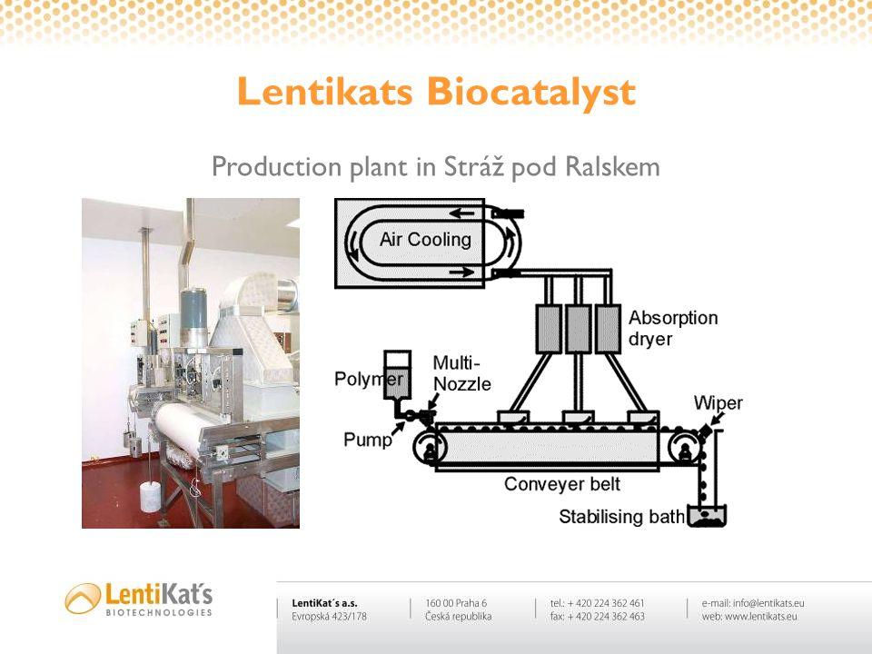 Lentikats Biocatalyst