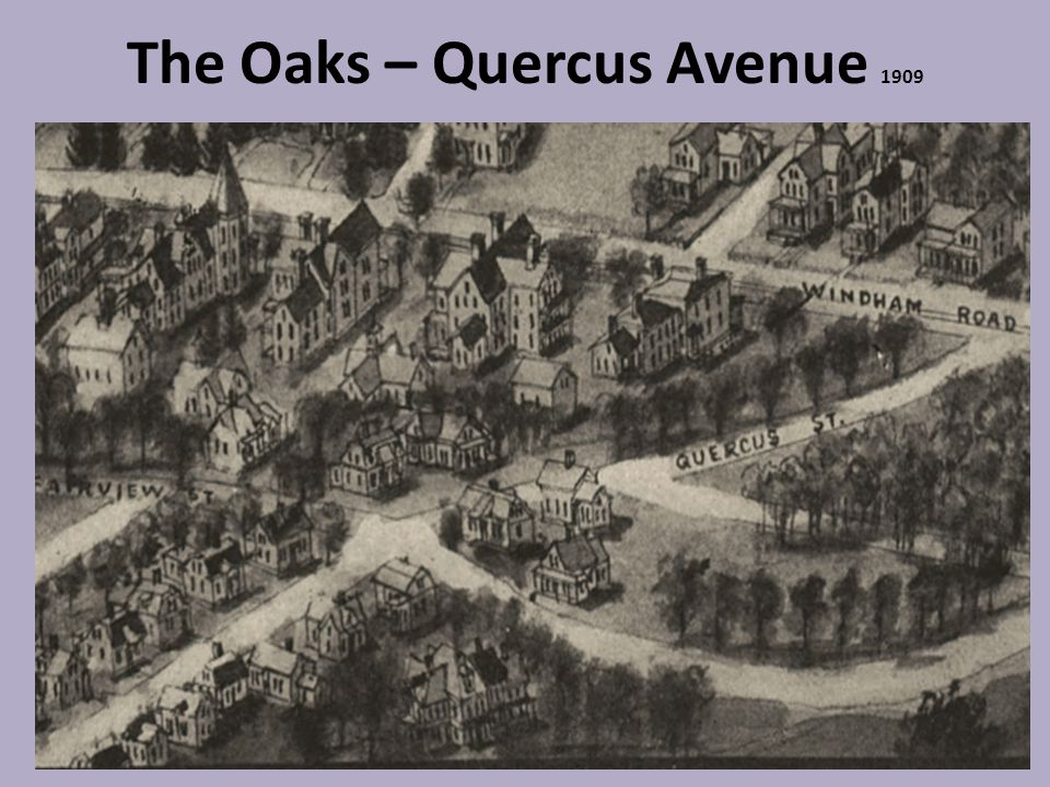 The Oaks – Quercus Avenue 1909