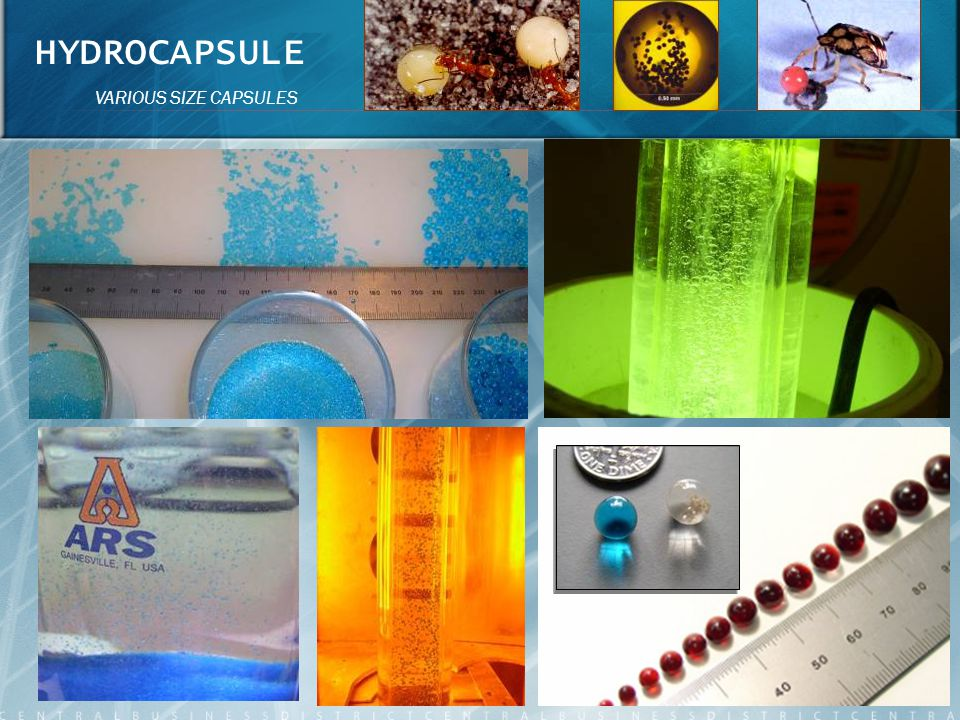 HYDROCAPSULE VARIOUS SIZE CAPSULES 8