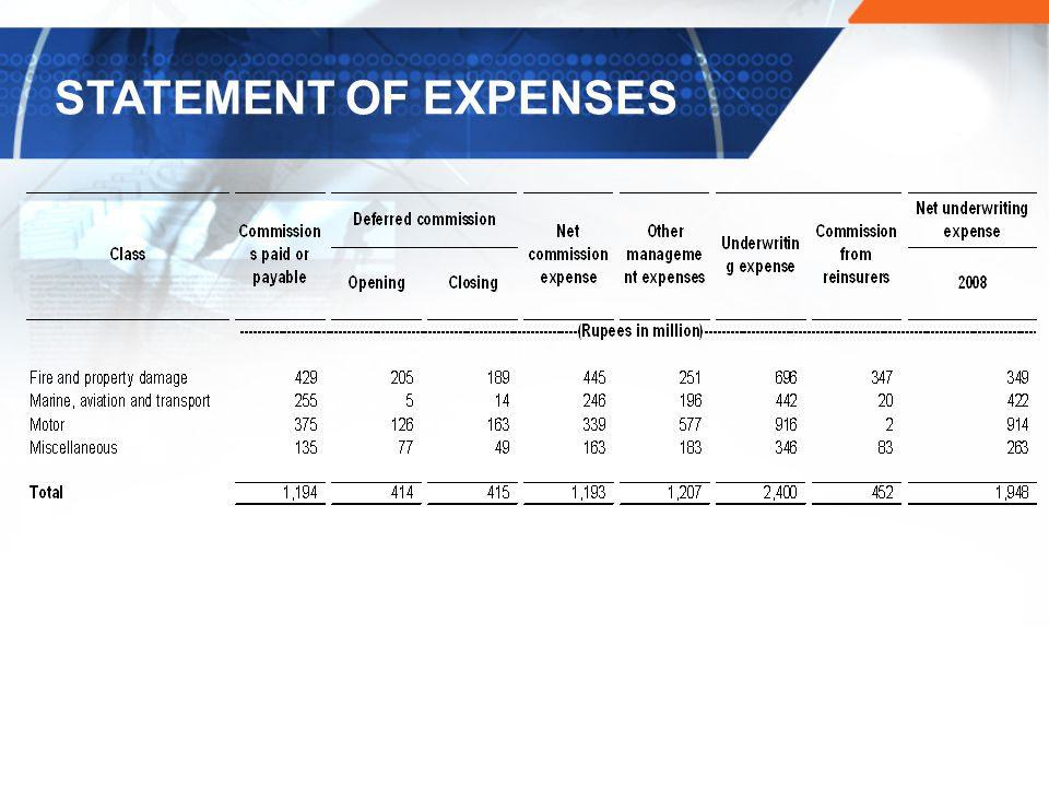 STATEMENT OF EXPENSES